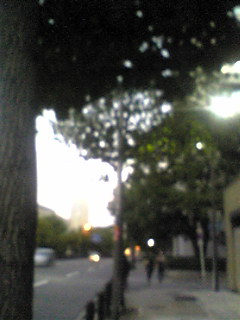 Image168.jpg